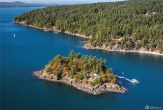 5936 Xxx Fawn Island, Orcas Island, WA 98243 (#1039934) :: Ben Kinney Real Estate Team