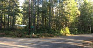 0 Lake Court, Tahuya, WA 98588 (#1041165) :: Ben Kinney Real Estate Team