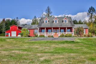 22622 N Starbird Rd, Mount Vernon, WA 98274 (#1041825) :: Ben Kinney Real Estate Team