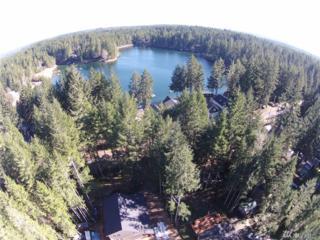 271 NE Circle Dr, Tahuya, WA 98588 (#1042654) :: Ben Kinney Real Estate Team