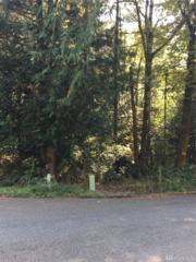 0 Lynwood & Cloud, Shelton, WA 98584 (#1043138) :: Ben Kinney Real Estate Team