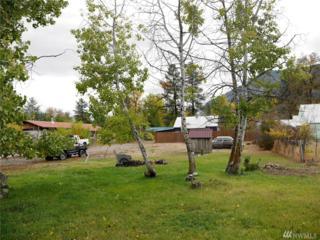 0 Riverside Ave, Twisp, WA 98856 (#1043848) :: Ben Kinney Real Estate Team