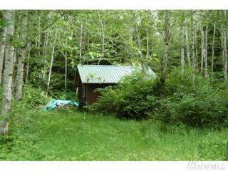 9999 Lot 1 Hwy 101 South, Forks, WA 98331 (#1043883) :: Ben Kinney Real Estate Team