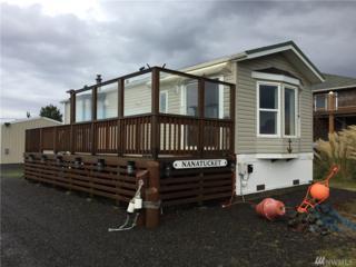 3128 Kindred Ave, Tokeland, WA 98590 (#1044386) :: Ben Kinney Real Estate Team