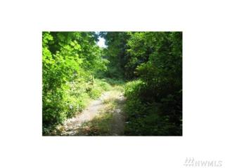 111111 Arnold Ave, Port Orchard, WA 98366 (#1044792) :: Ben Kinney Real Estate Team