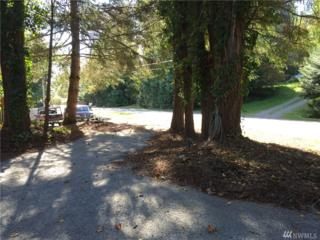 1499 Lake Drive, Camano Island, WA 98282 (#1045151) :: Ben Kinney Real Estate Team