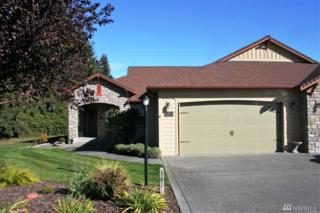 161 Mount Baker Dr, Sequim, WA 98382 (#1045224) :: Ben Kinney Real Estate Team