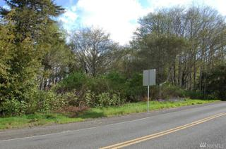 7-Lot Copalis Beach Rd, Copalis Beach, WA 98569 (#1046083) :: Ben Kinney Real Estate Team