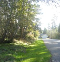 454 Gramayre Rd, Coupeville, WA 98239 (#1046250) :: Ben Kinney Real Estate Team