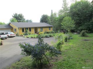 36808 NE 81st Ave, La Center, WA 98629 (#1046370) :: Ben Kinney Real Estate Team