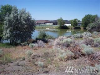 904 Camas Place S, Moses Lake, WA 98837 (#1047471) :: Ben Kinney Real Estate Team