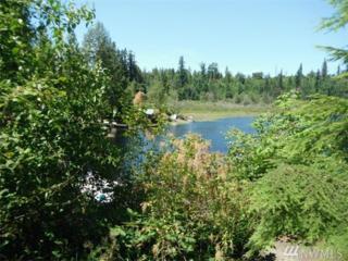 13607 Twin Lakes Dr E, Graham, WA 98338 (#1047710) :: Ben Kinney Real Estate Team