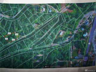 190 N Sylvester Lane, Lilliwaup, WA 98320 (#1049320) :: Ben Kinney Real Estate Team