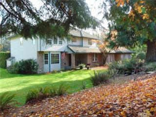 32710 224th Place SE, Black Diamond, WA 98010 (#1049379) :: Ben Kinney Real Estate Team