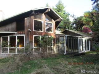 1175 Cameron Rd, Port Angeles, WA 98382 (#1049782) :: Ben Kinney Real Estate Team