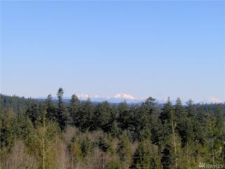 0-Lot 13 White Fir Way Dr, Port Hadlock, WA 98339 (#1050386) :: Ben Kinney Real Estate Team