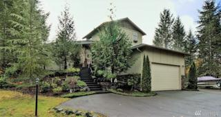 131 E Lexington Place, Shelton, WA 98584 (#1051731) :: Ben Kinney Real Estate Team