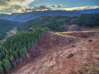 0 Eagle Creek Rd, Leavenworth, WA 98826 (#1051985) :: Ben Kinney Real Estate Team