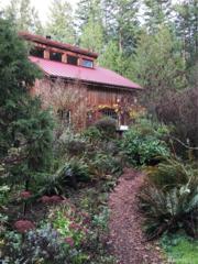 123 Biendl Rd, Shaw Island, WA 98286 (#1052220) :: Ben Kinney Real Estate Team