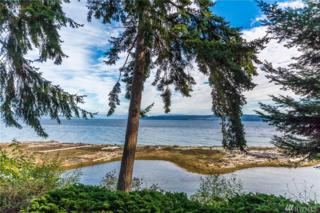 377 Harrington Rd, Coupeville, WA 98239 (#1052599) :: Ben Kinney Real Estate Team