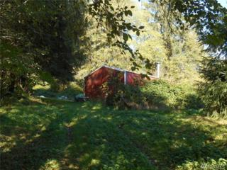 343 Middle Valley Rd, Skamokawa, WA 98647 (#1052733) :: Ben Kinney Real Estate Team