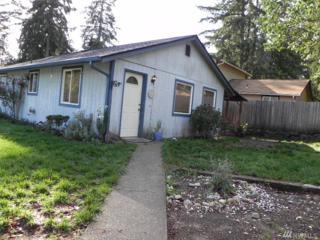 390 NE Schooner Lp, Belfair, WA 98528 (#1053047) :: Ben Kinney Real Estate Team