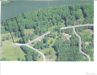 0 Lot 5 Pressentin Ranch Dr, Concrete, WA 98237 (#1053120) :: Ben Kinney Real Estate Team