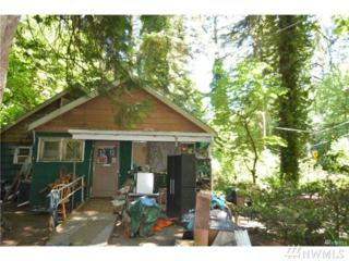 11913 State 302 Rd NW, Gig Harbor, WA 98329 (#1053519) :: Ben Kinney Real Estate Team
