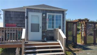 26905 Sandridge Rd, Nahcotta, WA 98637 (#1053654) :: Ben Kinney Real Estate Team