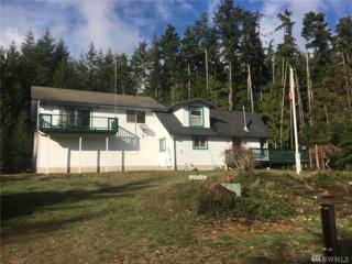 171 Rhododendron Lane, Brinnon, WA 98320 (#1053720) :: Ben Kinney Real Estate Team