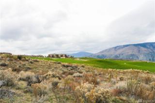 202 Desert Canyon Blvd, Orondo, WA 98843 (#1053929) :: Ben Kinney Real Estate Team