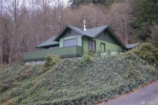 30601 N Hwy 101, Lilliwaup, WA 98555 (#1053950) :: Ben Kinney Real Estate Team