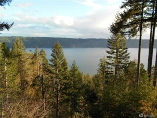 781 N Colony Surf Dr, Lilliwaup, WA 98555 (#1054364) :: Ben Kinney Real Estate Team