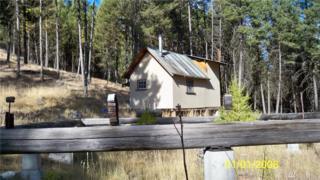 4004 Cougar Creek Rd W #4004, Tonasket, WA 98855 (#1054377) :: Ben Kinney Real Estate Team