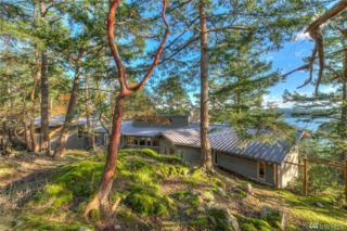 50 Nuthatch Lane, Orcas Island, WA 98243 (#1054865) :: Ben Kinney Real Estate Team