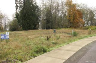 15 Mcdonald Creek Lane, Elma, WA 98541 (#1054988) :: Ben Kinney Real Estate Team