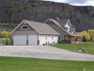 55665 NE Bay Area Dr, Electric City, WA 99123 (#1055030) :: Ben Kinney Real Estate Team