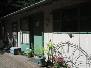 81 NE Madrona Ave, Tahuya, WA 98588 (#1055214) :: Ben Kinney Real Estate Team