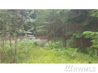 8576 Bluebell Ct, Maple Falls, WA 98266 (#1055301) :: Ben Kinney Real Estate Team