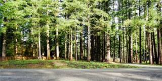 8298 Golden Valley Blvd, Maple Falls, WA 98266 (#1055798) :: Ben Kinney Real Estate Team