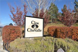 70 Vignito Lane, Chelan, WA 98816 (#1056030) :: Ben Kinney Real Estate Team