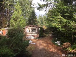 19615 19th St Ct KP, Lakebay, WA 98349 (#1056161) :: Ben Kinney Real Estate Team