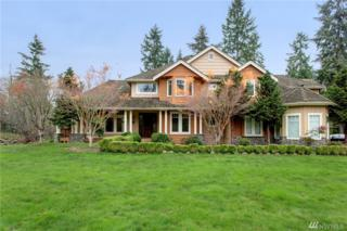 7401 229th Place SE, Woodinville, WA 98072 (#1056216) :: Ben Kinney Real Estate Team