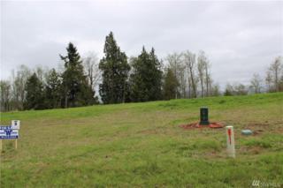 39 Mcdonald Creek Lane, Elma, WA 98541 (#1056249) :: Ben Kinney Real Estate Team
