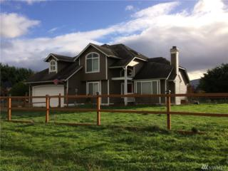 333 Griffith Farm Road, Sequim, WA 98382 (#1056344) :: Ben Kinney Real Estate Team