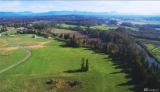 3-xx 236th (Lot 3) St NW, Stanwood, WA 98292 (#1056862) :: Ben Kinney Real Estate Team