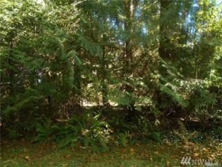1716 Fairview St NE, Olympia, WA 98506 (#1057451) :: Ben Kinney Real Estate Team