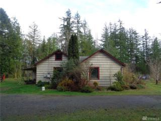 101 Washington St, Quilcene, WA 98376 (#1057550) :: Ben Kinney Real Estate Team
