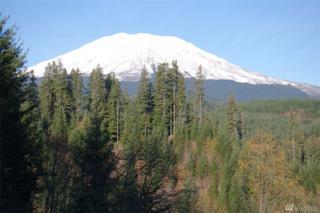 0-XXX Glacier View Dr, Cougar, WA 98616 (#1057716) :: Ben Kinney Real Estate Team