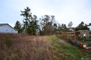 999 Corona Ave, Port Townsend, WA 98368 (#1058222) :: Ben Kinney Real Estate Team